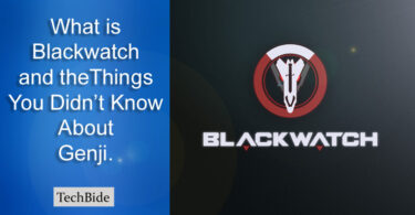 What is Blackwatch? | Things You Didn't Know About Genji.